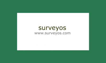 surveyos.com