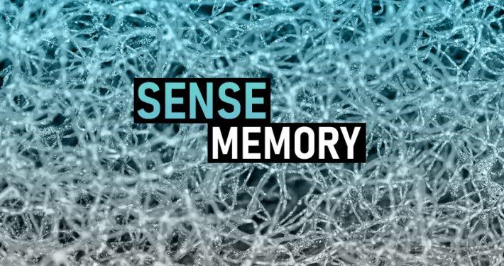 SenseMemory.com
