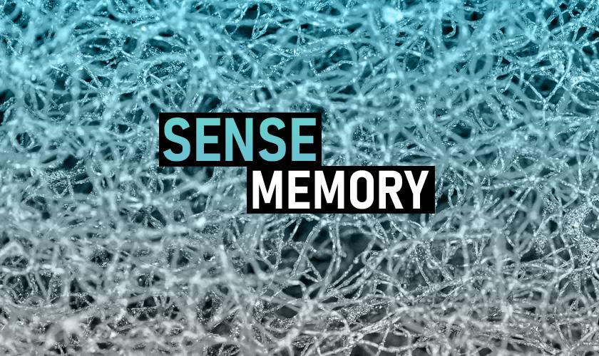 SenseMemory.com $75