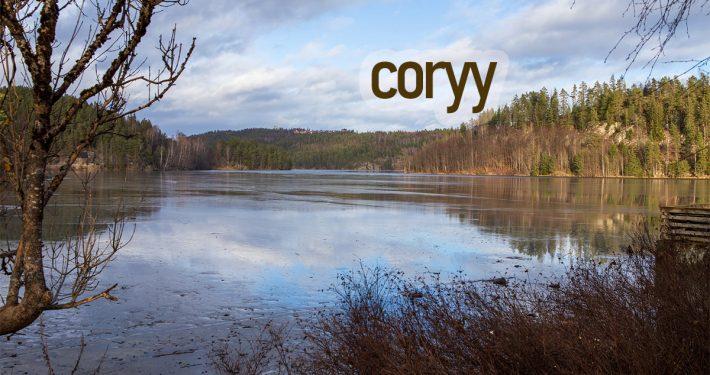 coryy.com