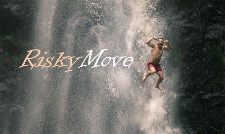 RiskyMove.com is 4 sale