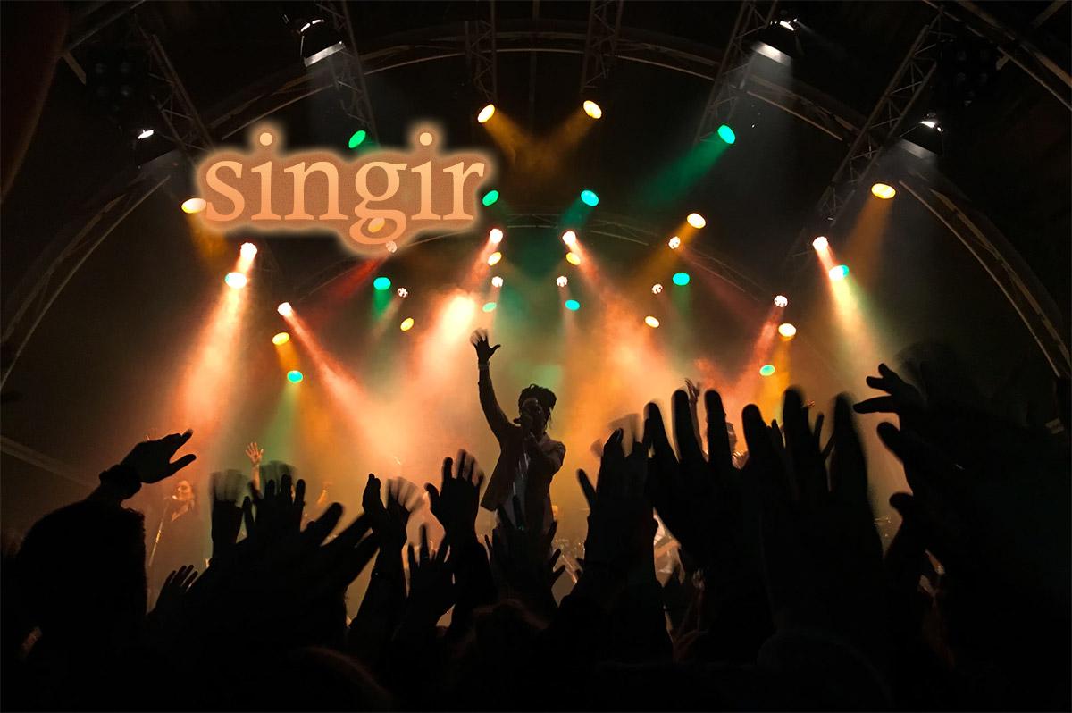 Buy singir.com for $97